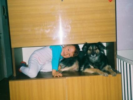 Zdjecia psów - 1